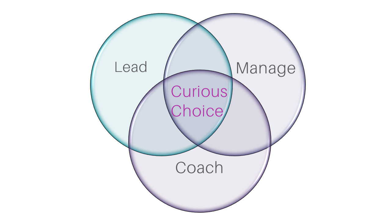 The Curious Choice Leadership Model