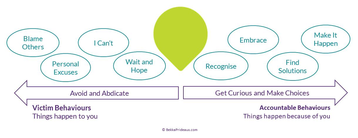 Curious Choices to Accountable behaviours